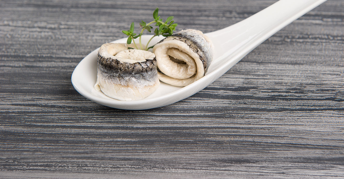 White anchovy