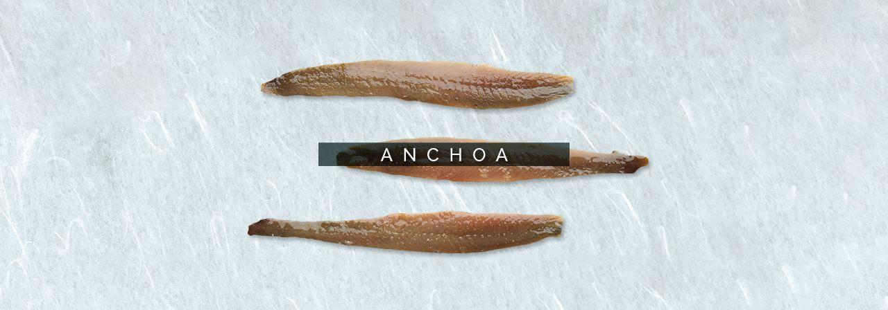 cabecebra-anchoa
