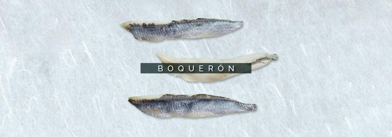 cabecebra-boqueron