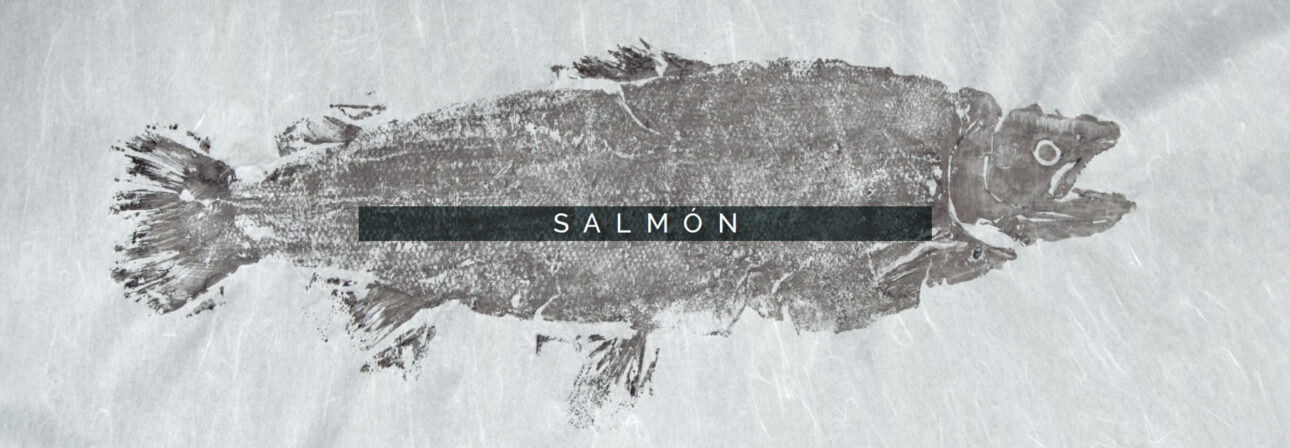 salmoncategoria